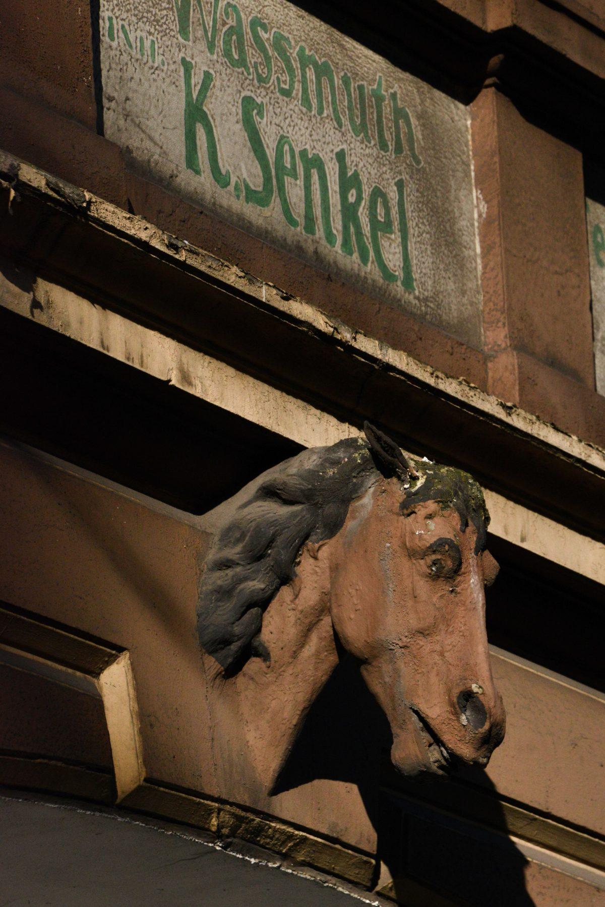 Pferdekopf und Alu-Haut: Zwei Gebäude in Not
